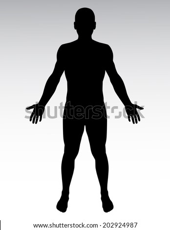 Human silhouette. - stock vector
