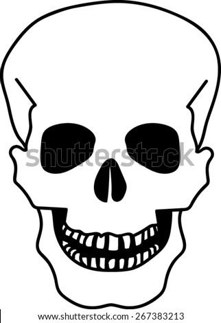 Human Skull Icon - Vector Art - stock vector
