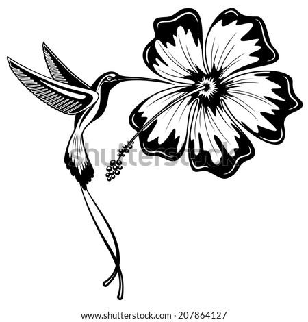 Hummingbird and Hibiscus Tattoo - stock vector