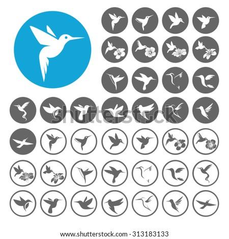 Hummingbird icons set. Illustration EPS10 - stock vector