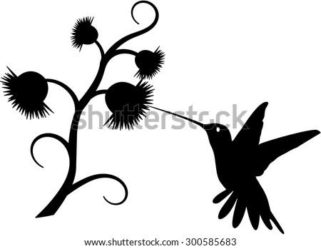 Hummingbird silhouette - stock vector