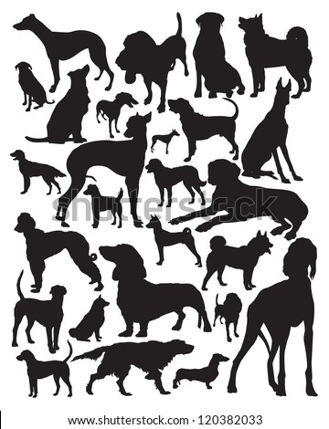 Hunting dogs silhouette - stock vector