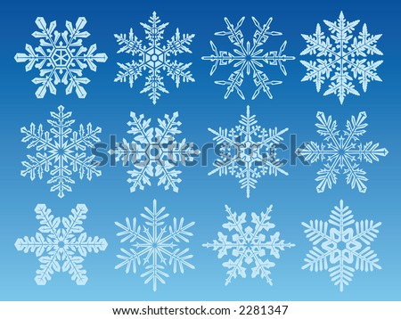 icon set of 12 different snowflakes - stock vector
