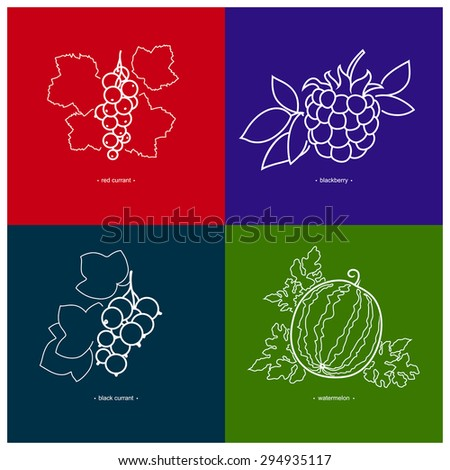 Icons of Black Currant, Watermelon, Red Currant, Blackberry on Colored Backgrounds - stock vector