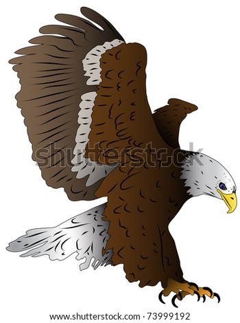 Illustrated bird, an eagle in landing - stock vector