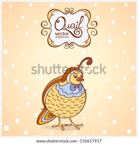 illustration funny character of a bird quail - stock vector