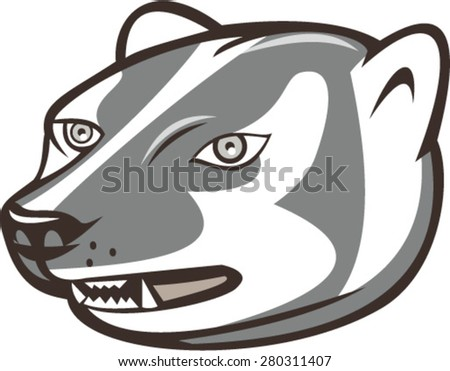 Illustration of a badger head looking to the side set on isolated white background done in cartoon style.  - stock vector