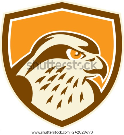 Illustration of a peregrine falcon hawk eagle bird head looking to side set inside shield on isolated background done in retro style.  - stock vector