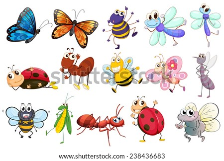 Illustration of a set of different kinds of insects - stock vector
