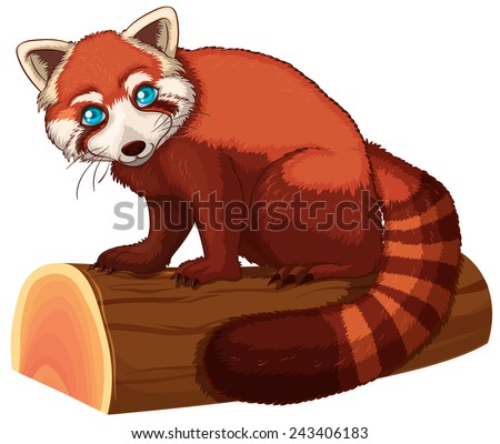 Illustration of a single red panda - stock vector