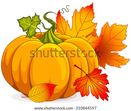 Illustration of Autumn Pumpkin and leaves  - stock vector
