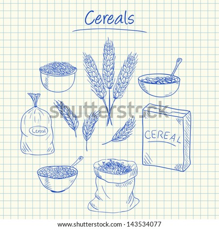 Illustration of cereals ink doodles on squared paper - stock vector