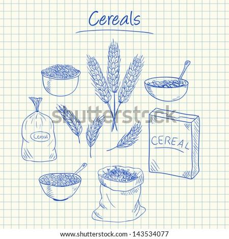 Illustration of cereals ink doodles on squared paper - stock vector