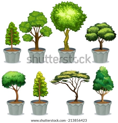 Illustration of different potted plants - stock vector