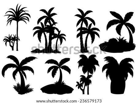 Illustration of different silhouette palm trees - stock vector