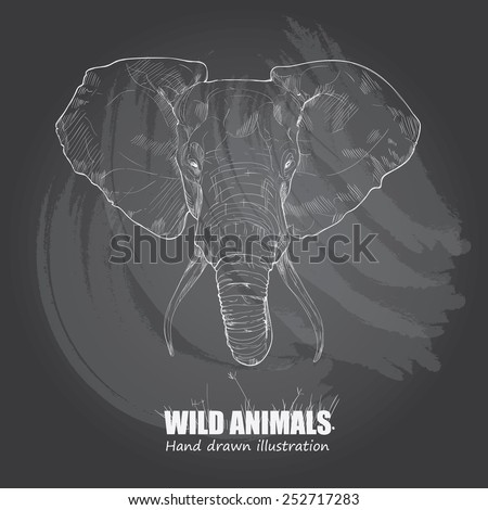 illustration of elephant. drawing vector on chalkboard. - stock vector
