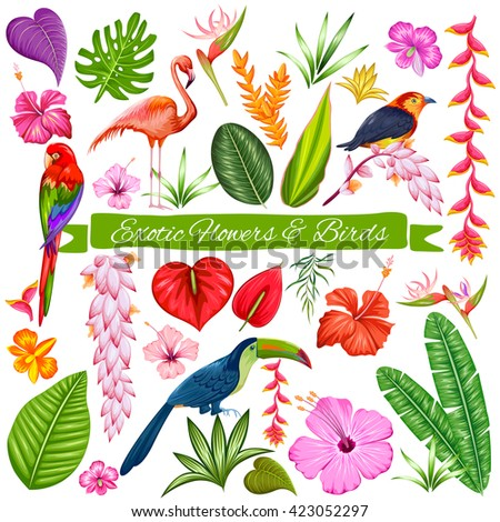 illustration of Exotic Tropical Flower, Bird and Leaf set for designing purpose - stock vector