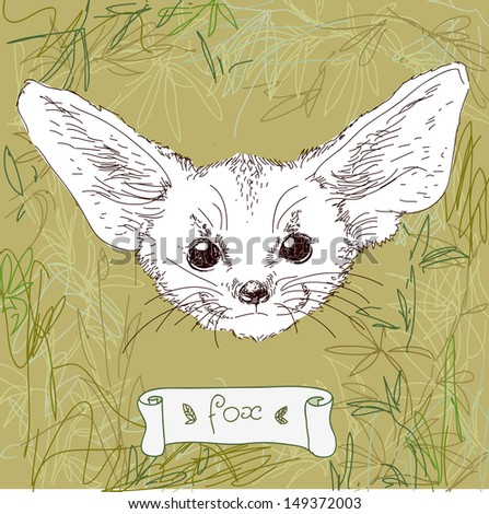 Illustration of fox with large ears on forest background in vector - stock vector