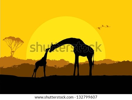 Illustration of giraffe mother and child in safari at sunset silhouette, vector - stock vector