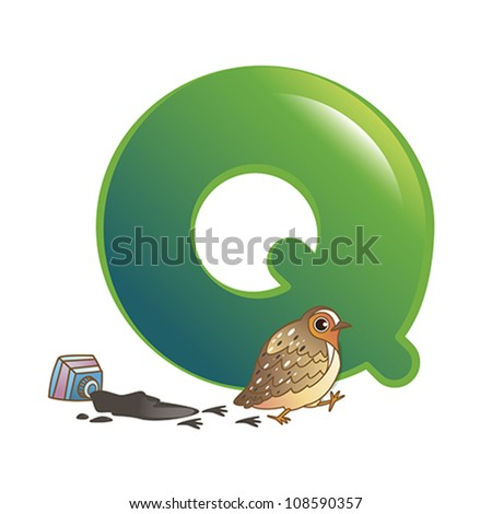 illustration of isolated animal alphabet Q with quail on white - stock vector