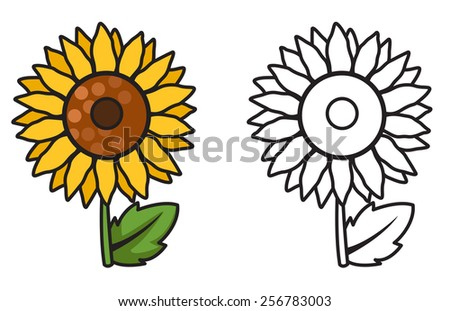 illustration of isolated colorful and black and white sunflower for coloring book - stock vector