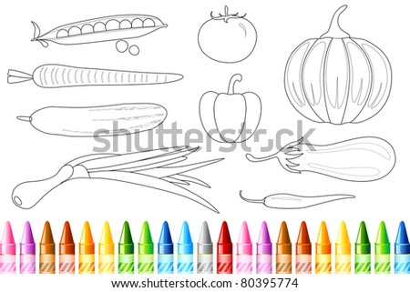 illustration of sketch of vegetable with colorful crayon - stock vector