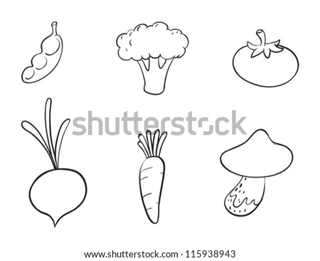 illustration of sketches of vegetables on a white background - stock vector