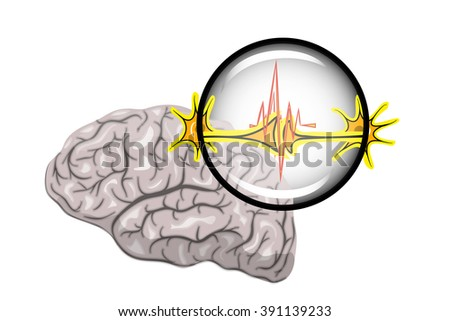 Illustration of the brain and neurons, increased under a microscope - stock vector