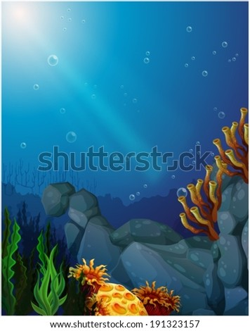 Illustration of the corals and seaweeds under the sea - stock vector