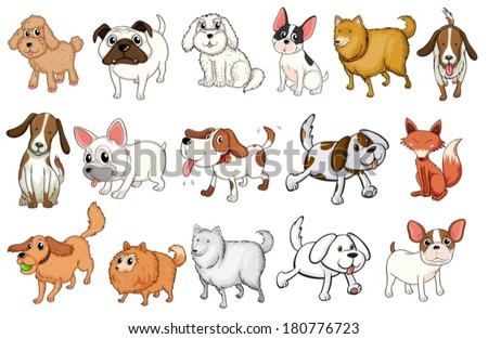 Illustration of the different breeds of dogs on a white background - stock vector