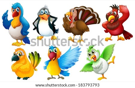 Illustration of the different species of birds on a white background - stock vector