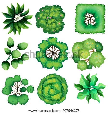 Illustration of the topview of leaves on a white background - stock vector