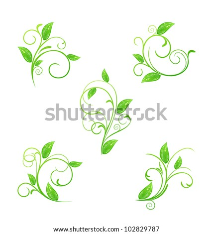 Illustration set green floral elements with eco leaves isolated - vector - stock vector