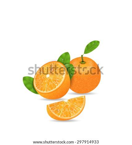 Illustration Set Orange Fruits, Cut and Slices, Ripe Citrus - Vector - stock vector