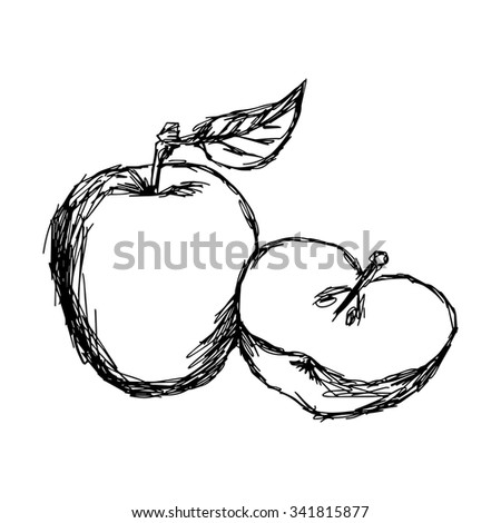 illustration vector doodle hand drawn of sketch apple isolated - stock vector