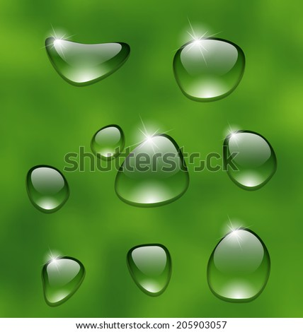 Illustration water drops on fresh green leaf - vector - stock vector