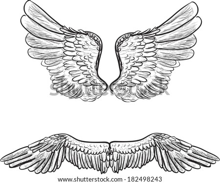 illustration with angel wings isolated on white background - stock vector