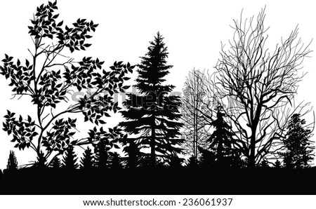 illustration with black forest isolated on white background - stock vector