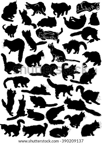 illustration with cat collection isolated on white background - stock vector