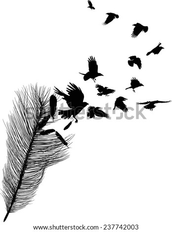 illustration with crows flying from feather silhouette isolated on white background - stock vector