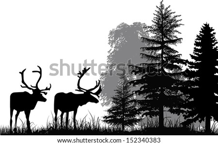 illustration with deer silhouettes in forest isolated on white background - stock vector