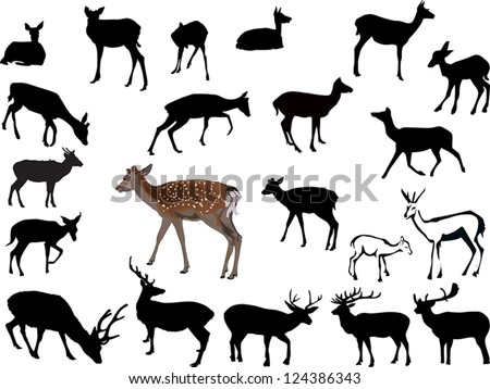 illustration with deer silhouettes isolated on white background - stock vector