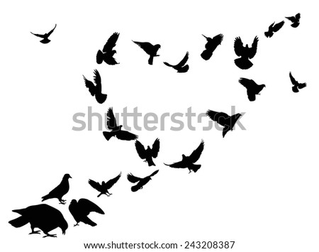 illustration with heart from pigeon silhouettes isolated on white background - stock vector