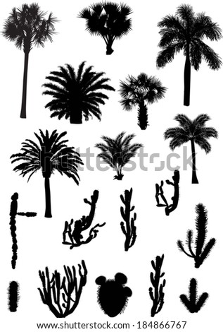illustration with palm and cactus silhouettes isolated on white background - stock vector