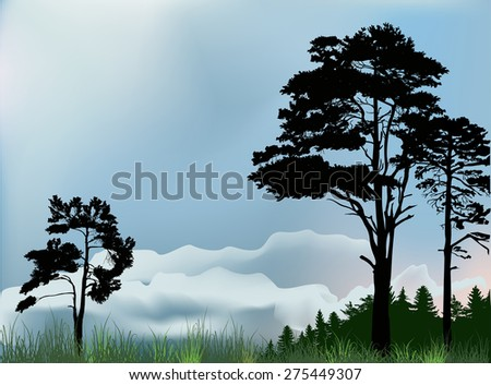 illustration with pine forest silhouettes under dark sky - stock vector