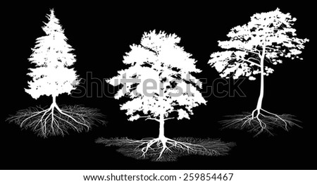 illustration with set of tree silhouettes isolated on black background - stock vector