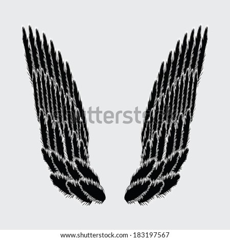 illustration with wings for your design - stock vector