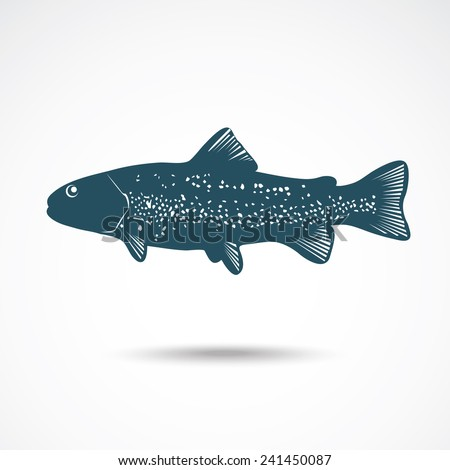 Illustrations of rainbow Trout on the gray. Vector illustration - stock vector