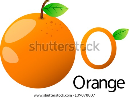 illustrator o font with orange - stock vector