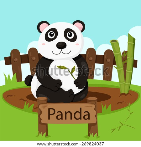 Illustrator of Panda in the zoo - stock vector